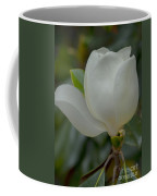 Magnolia Opening Coffee Mug