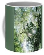 Magnolia Plantation Sc Coffee Mug