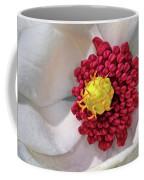 Magnolia Sieboldiana Closeup Coffee Mug