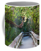 Mahogany Hammock Coffee Mug by Kenneth Albin