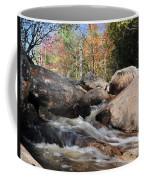 maine 29 Baxter State Park Trailside Stream Coffee Mug