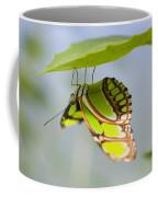 Malachite Butterfly On Leaf Coffee Mug