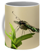 Malachite Butterfly Coffee Mug
