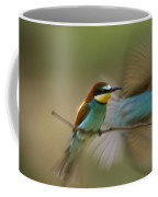 Male Bee Eater Leaves Perch To Find Coffee Mug