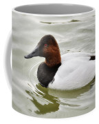 Male Canvasback Duck  Coffee Mug