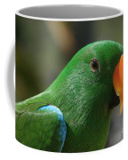Male Eclectus Parrot Coffee Mug