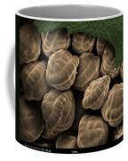 Male Fern Sporangia, Sem Coffee Mug