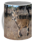 Male White-tailed Deer Coffee Mug