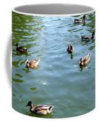 Mallard Ducks Coffee Mug