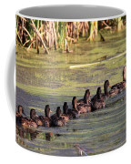 Mallard Ducks In A Row Coffee Mug