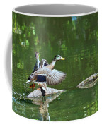 Mallards Taking Off Coffee Mug