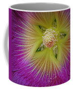 Malva Middle Coffee Mug