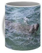 Manatee At Ponce Inlet Coffee Mug