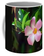 Mandevilla Pink Coffee Mug