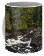 Manido Falls 5 Coffee Mug