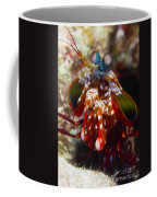 Mantis Shrimp, Australia Coffee Mug