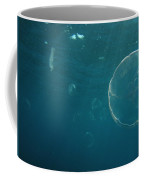 Many Moon Jellies Coffee Mug