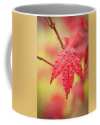 Maple 1 Coffee Mug