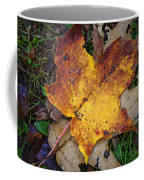 Maple Leaf In Fall Coffee Mug