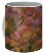 Maple Leaves Are Bright Red On A Rainy Coffee Mug
