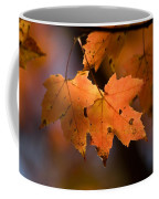 Maple Leaves In The Fall In Middlebury Coffee Mug