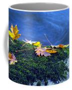 Maple Leaves On Mossy Rock Coffee Mug