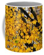 Maple Tree Panorama Coffee Mug