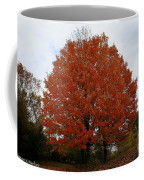 Maples In The Meadow Coffee Mug