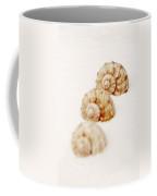 Marine Snails Coffee Mug