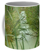 Marsh-field Ma Coffee Mug