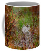 Marsh Spider Web Coffee Mug