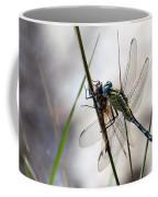 Mating Dragonflies  Coffee Mug
