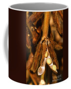 Mature Soybeans Coffee Mug by Science Source