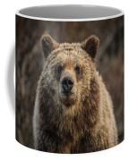 Maybe You Should Move Coffee Mug