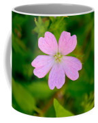 Meadow Checker Mallow Coffee Mug