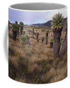 Meadows And Groundsel Trees, Mt Coffee Mug