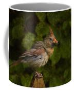 Meal Time Coffee Mug