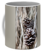 Dry Mediterranean Pinecone With Winter Colors Coffee Mug
