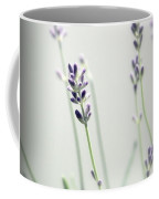 Memories Of Provence Coffee Mug