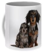 Merle Dachshund And Doxie Doddle Pup Coffee Mug