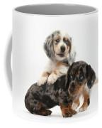 Merle Dachshund Pups Coffee Mug