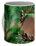 Michigan Cedar Cones Coffee Mug