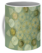 Microscopic Arrangement Coffee Mug by Darlyne A. Murawski