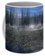 Midway Geyser Area Coffee Mug