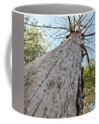 Mighty Tree And The Bark Beetle Coffee Mug
