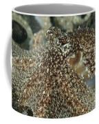 Mimic Octopus Head, North Sulawesi Coffee Mug