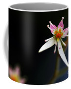 Mini Cactus Flower Coffee Mug