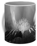 Miniature Tall Bearded Iris Named Consummation Coffee Mug