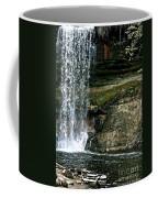 Minnehaha Falls Coffee Mug
