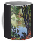 Mirror Reflection Coffee Mug